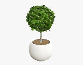 3D Plant artificial 07