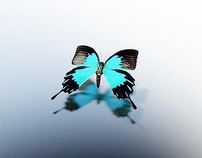 Animated Butterfly 3D asset