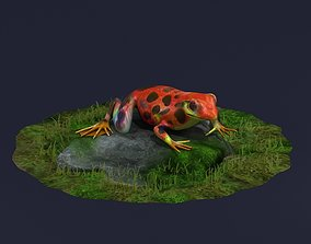 Jungle frogs poison dart frogs rainforest frogs 3D