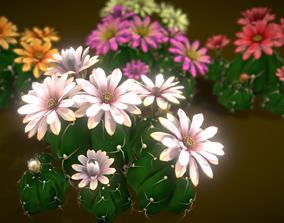 Flower Gymnocalycium Horstii 3D model