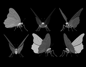 insect 3D butterfly