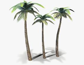 3D asset Palm Tree lowpoly