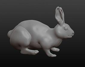 3D model wild rabbit