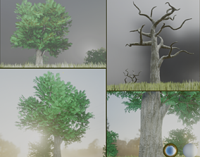 3D asset realtime Black Locust Tree Robinia - 15m