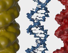 3D DNA 3 pack medical