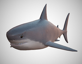 3D asset game-ready Great White Shark