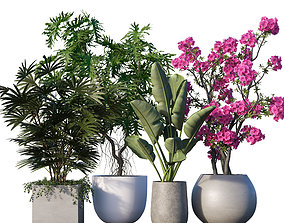 Plant set 09 3D
