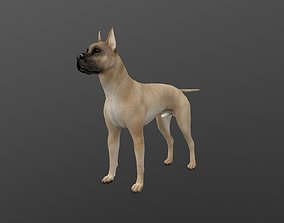 3D ANML-019 Dog
