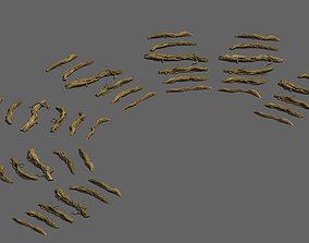 Wild - roots 3D model