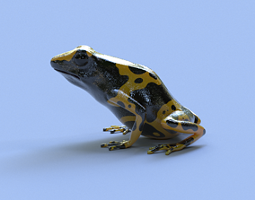 yellow Bumblebee Poison Dart Frog V2 3D