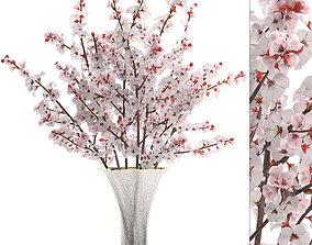 3D model Sakura Bouquet