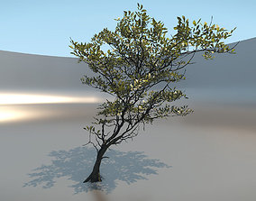 3D model Tree micro with leaves
