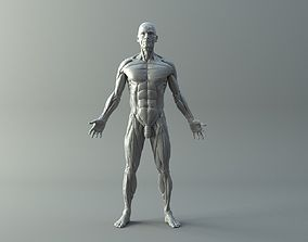 Ecorche for printing 3D printable model