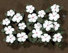 Ground Plants Flower White Vinca 3D model realtime