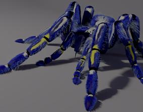 Freaky blue spider 3D model