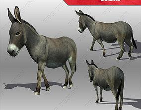 Donkey Animated 3D model