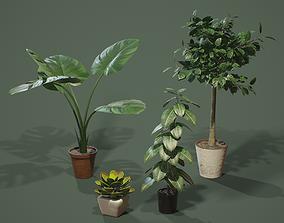 PBR House Plants 3D model