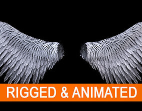 Angel Wings 3D model animated