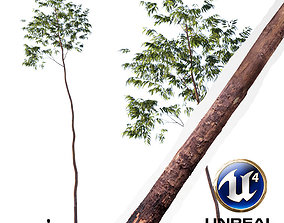 Realistic Tree18- UE4 Asset and FBX Files animated 2