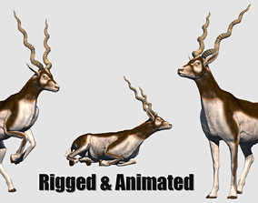 animated antelope 3D model illustration