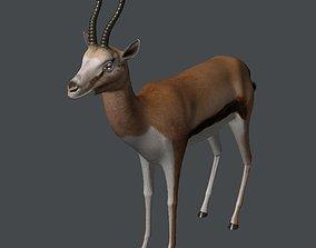3D Gazelle gazelle