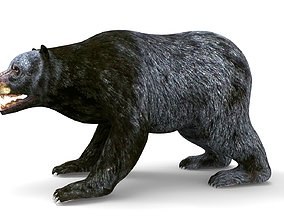 animated Black Bear Rigged and animated 3D Model