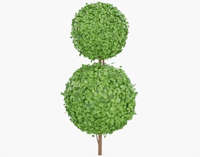 3D model Topiary Bush Double