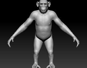 Chimpanzee 3D sculpt