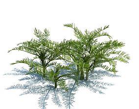 3D Green Plants Ferns