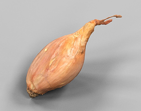 Sjalotte Onion 3D model realtime