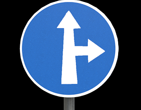 Compulsory ahead or turn right 3D asset
