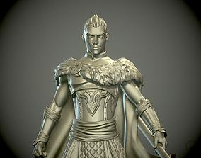 Young man Warrior or Paladin pathfinder 3D print