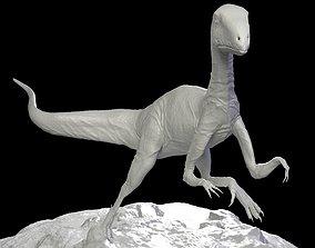 Leaellynasaura Dinosaurs australia 3D Print character