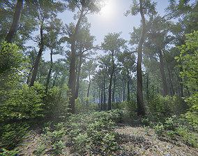 3D model Oak Forest Environment Unity Update 1 2