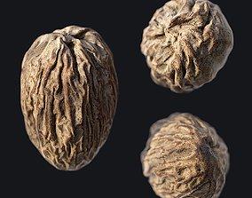 Nutmeg B 3D asset