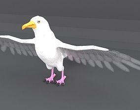 Seagull 3D asset