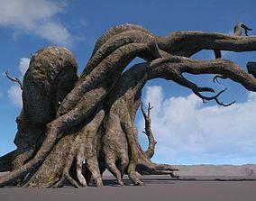 Ancient Tree V3 3D model