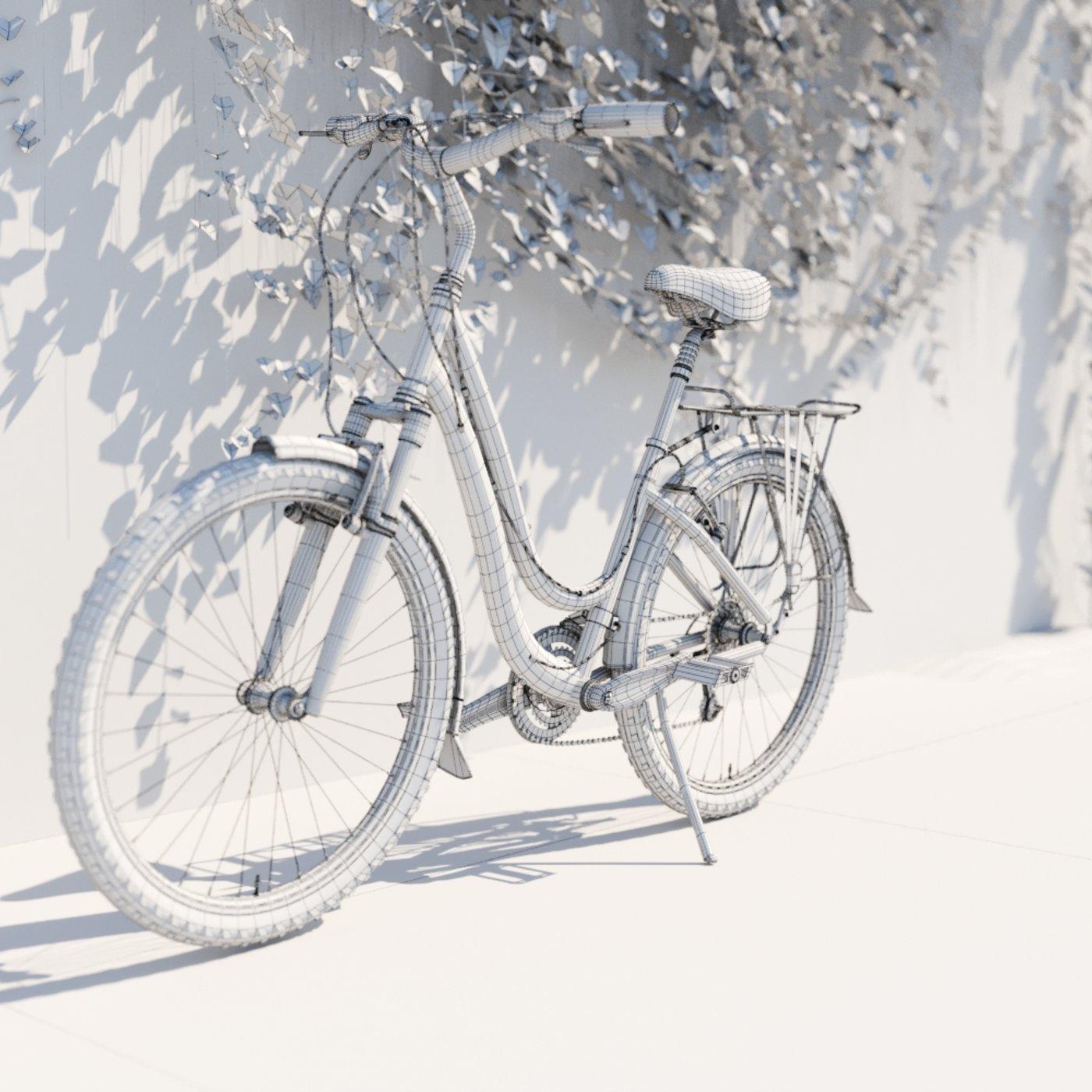Bike in the village