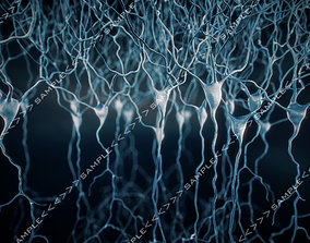 3D Pyramidal-Neurons set