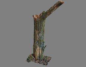 Stick - photogrammetry 3D