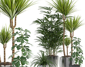 Plants collection 90 3D