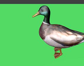 3D model lowpoy duck
