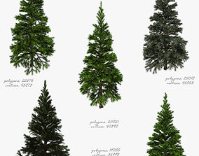 Tree fir 3D model realtime