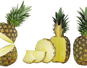 Pineapple BLENDER 3D Model Cycles