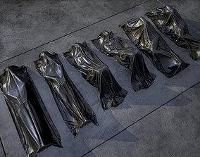 3D asset Bodybags Pbr