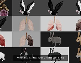 3D Animals birds Insects and Cloth Collection 2