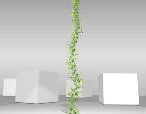 Ivy Vine - Version 1 3D asset