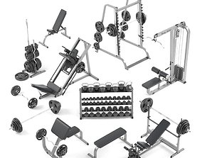 3D model Large set for the gym by Bodysolid scott