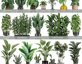 3D model Collection of plants of 20 pieces SET 3