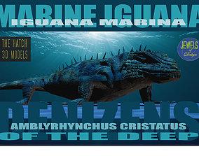 Marine iguana model 3D asset